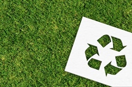 Does Paper Recycling Really Help the Environment?